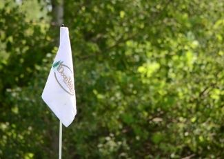 Photo of a flag for Doon Valley Golf Course